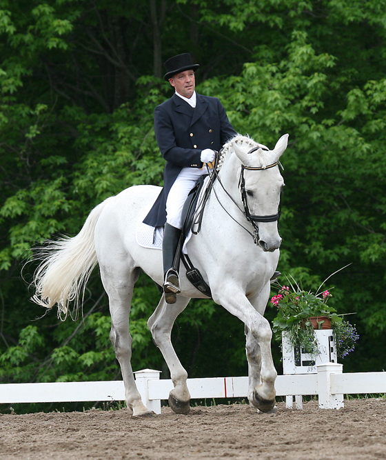 Dr. Wessum riding dressage in arena